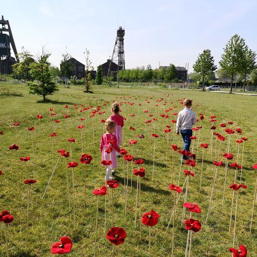 Kinder im Mohnblütenfeld auf Niederberg ©